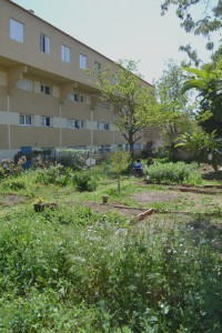 Jardins+atelier