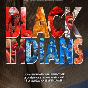 Projection du film Black Indians au cinéma Le méliès, Port de Bouc